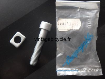 Campagnolo Seatpost fixing screw and washer for Record NOS